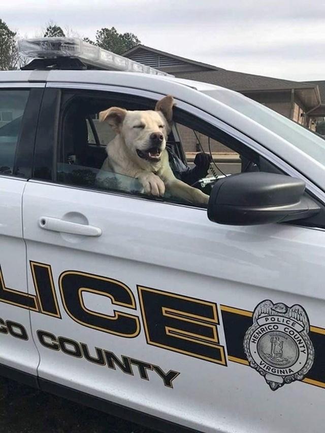 """""""Ovaj pas se izgubio. Policajac mu je pomogao da se vrati svojoj obitelji."""""""