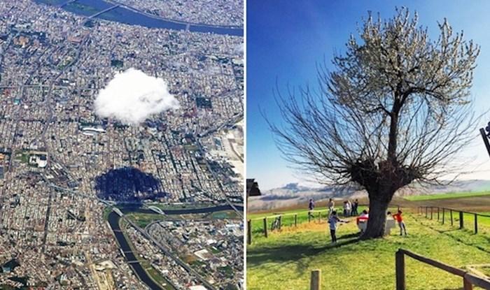 10 nesvakidašnjih fotografija koje otkrivaju zanimljive detalje o svijetu oko nas