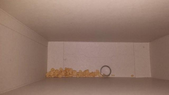 """""""U kutiji kukuruznih pahuljica sam našla mužev vjenčani prsten... Što?!!!"""""""