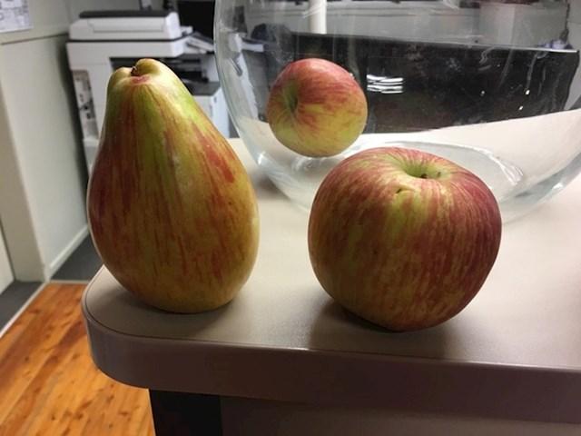 """""""Našao sam jabuku koja je imala oblik kruške!"""""""
