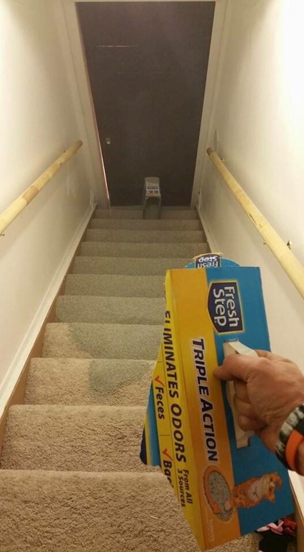 Kutija je pukla i pijesak za mačke se prosuo po stepenicama.