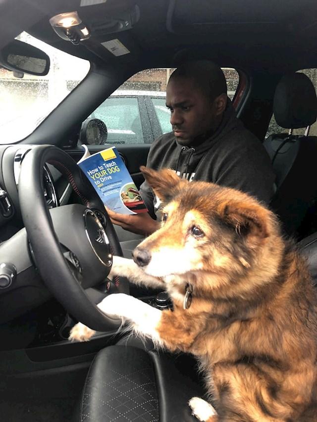 """""""Moj pas je napunio 16 godina pa mislim da je vrijeme da počne učiti voziti auto."""""""