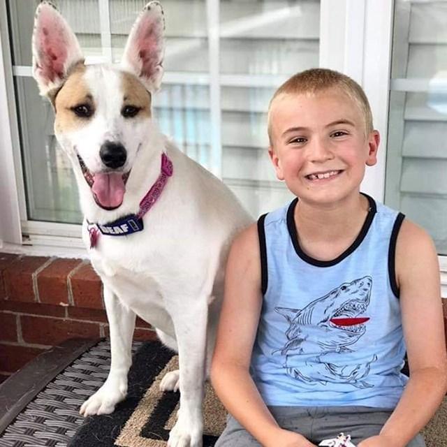 Ovaj 6-godišnjak je nagovorio već preko 800 ljudi da udome pse iz skloništa.