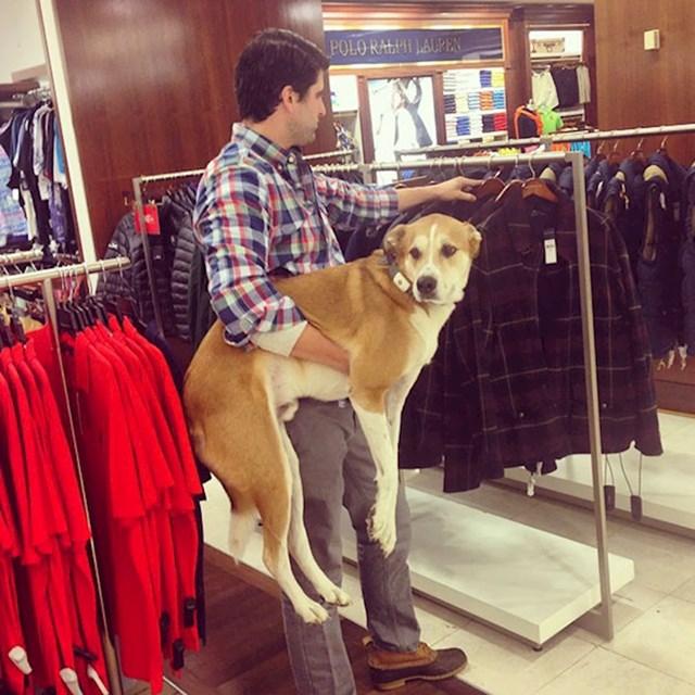 Obećao je ženi da će cijeli dan brinuti o psu.