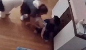 Dječačić je primijetio da je beba u opasnosti, kamera je snimila nevjerojatnu scenu