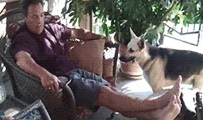 Smijat ćete se kad vidite kako je ovaj pas natjerao svog vlasnika da se igra s njim