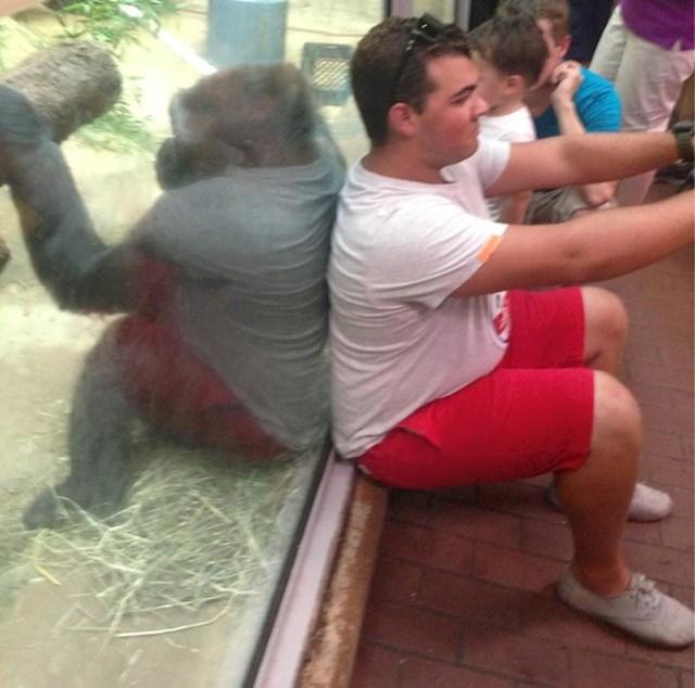 Ovaj mladić slika selfie, a i gorila očito pokušava izvesti nešto slično.