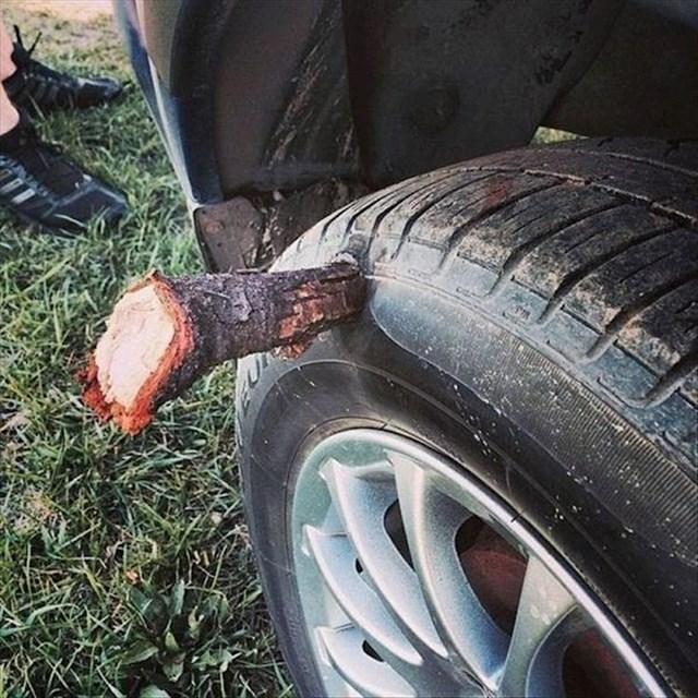 Vozač nije bio spreman vidjeti ovako nešto.