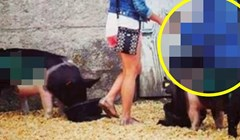 Žena je zaplakala kad je vidjela zbog čega ju je dečko odveo u svinjac