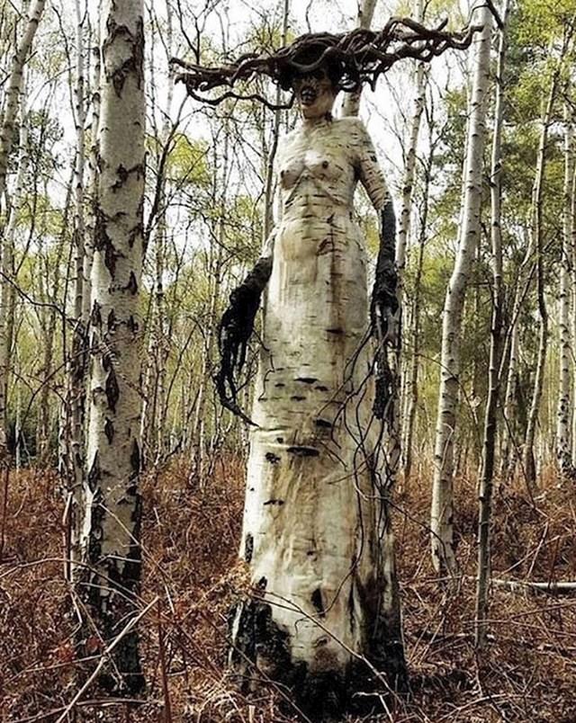 Ostaci drveta pretvoreni u neobičnu skulpturu usred šume