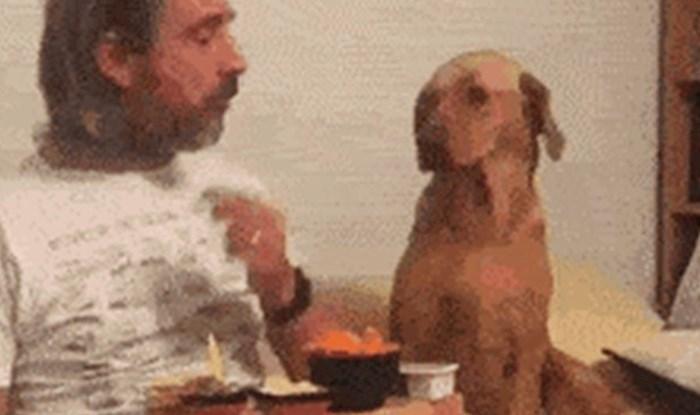 Nasmijat će vas reakcija psa koji je glumio da nije zainteresiran za vlasnikovu hranu