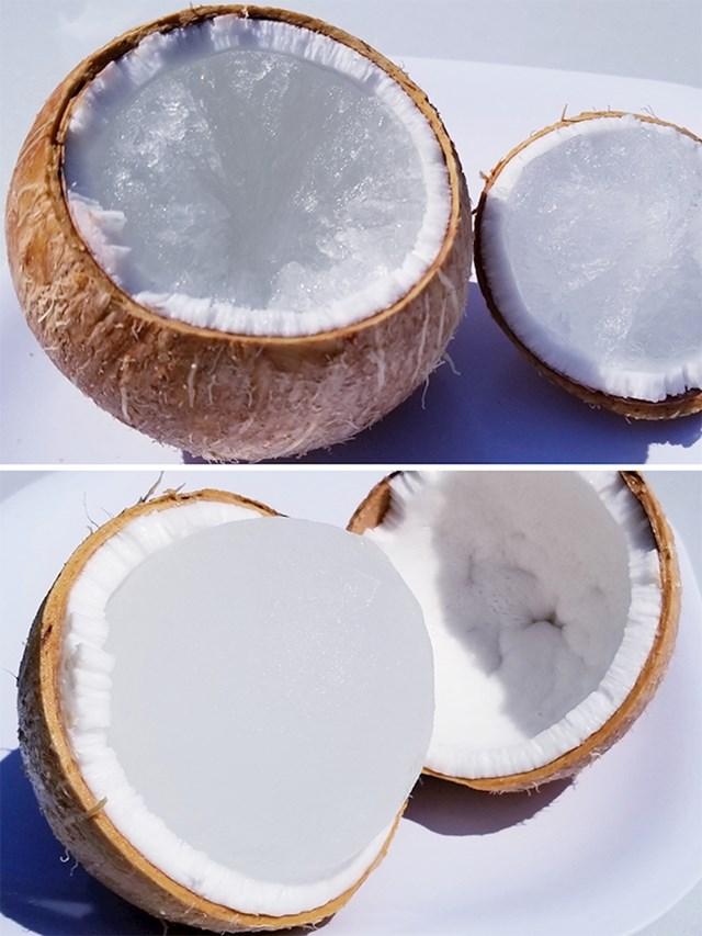 Što se dogodi kad kokos ostane u zamrzivaču...