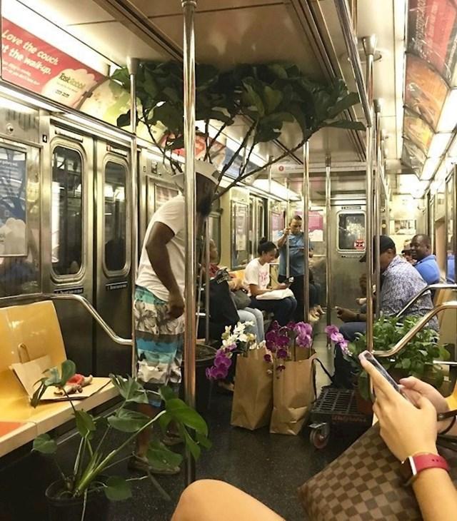 Netko je slikao lika koji je u metrou prodavao cvijeće i biljke. S jednom biljkom je ipak malo pretjerao. :)
