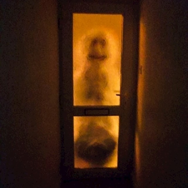 """""""Moja cimerica mora ustati u 4 ujutro kako bi stigla na vlak. Htjela sam je uplašiti, ispred ulaznih vrata sam napravila jezivog snjegovića."""""""