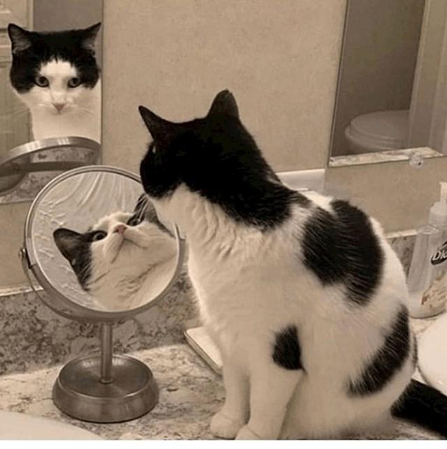 Mačka istovremeno gleda u dva ogledala?!
