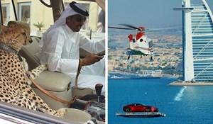 18 nesvakidašnjih prizora koje biste mogli vidjeti ako jednog dana posjetite Dubai