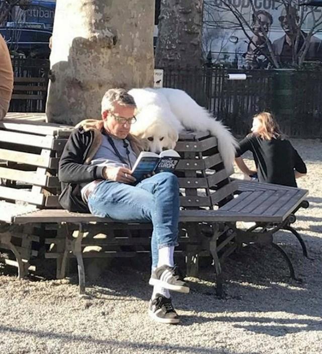 """""""Dok su se ostali psi igrali u parku, ovaj je čitao knjigu sa svojim vlasnikom."""""""