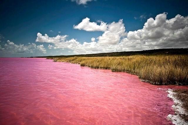 Rozo jezero u Senegalu (obojeno zbog alga)
