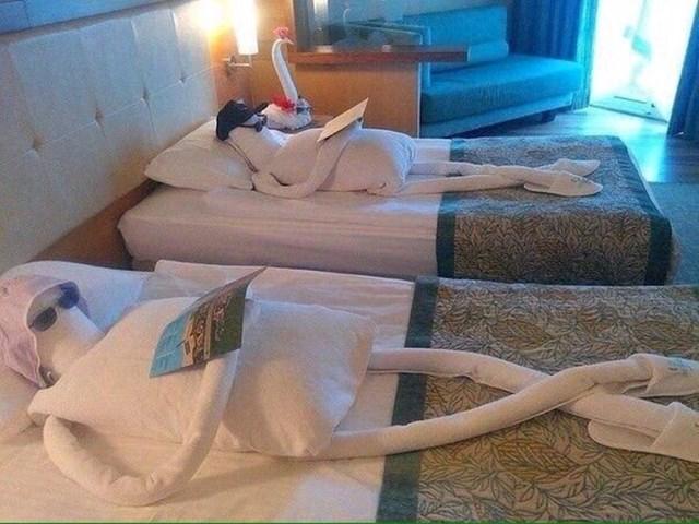 Kad su ušli u svoju hotelsku sobu, dočekao ih je zanimljiv prizor.
