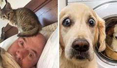 Svijet bi bez mačaka i pasa bio jako dosadno mjesto, ove fotke će vas u to uvjeriti