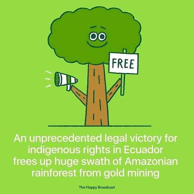 Neviđena pravna pobjeda za starosjedioce u Ekvadoru oslobađa golemi dio amazonske prašume od rudarenja zlata.