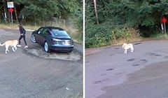 Srceparajuća snimka pokazuje kako je labrador mahao repićem dok ga je vlasnica ostavljala