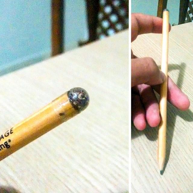 Ova olovka na vrhu ima sjeme. Kad postane prekratka za pisanje, možete je zabosti u zemlju i iz nje će izrasti drvo.