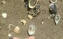 Dijete je na splitskoj plaži tražilo školjke, našlo je jednu koja se razlikovala od ostalih