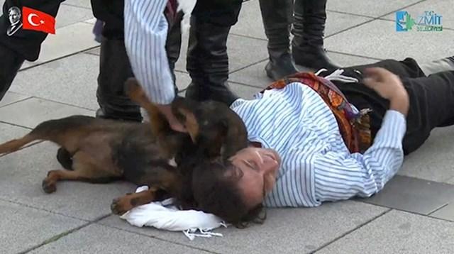 Pas se odmah svidio i izvođačima i prolaznicima koji su se zaustavili kako bi pogledali nastup. 😄