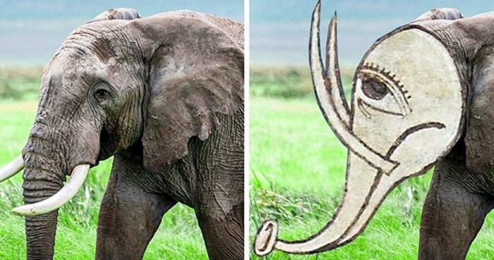 Pogledajte kako su ljudi iz srednjeg vijeka mislili da izgledaju životinje koje nikad nisu vidjeli