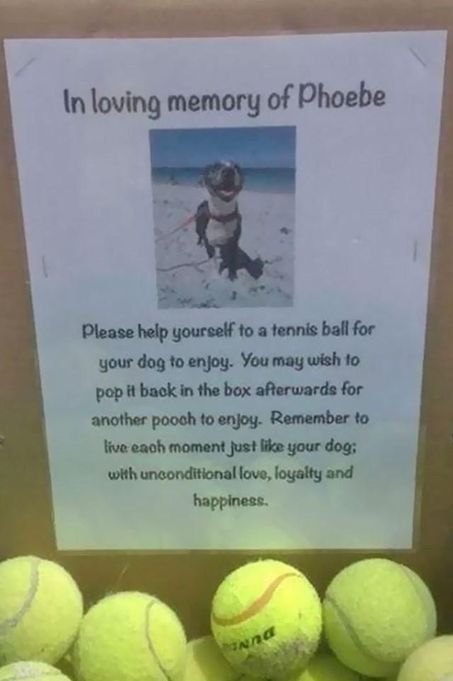 Žena kojoj je pas uginuo ostavila je na plaži kutiju s lopticama kako bi se drugi vlasnici mogli igrati sa svojim ljubimcima.