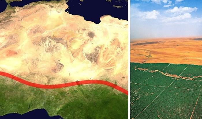 """Ljudi u Africi grade """"Veliki zeleni zid"""" od posađenih stabala kako bi pomogli planetu"""