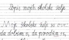 Brutalno iskreni učenik nasmijao je učiteljicu kada je pregledavala njegove rečenice o školskim željama