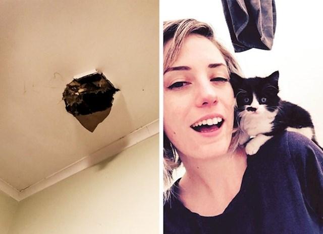 """""""Padala je jaka kiša, a iznad mog kreveta se stvorila rupa kroz koju mi je u sobu pao mačić. Nazvala sam ga azbest, sada živi sa mnom."""""""