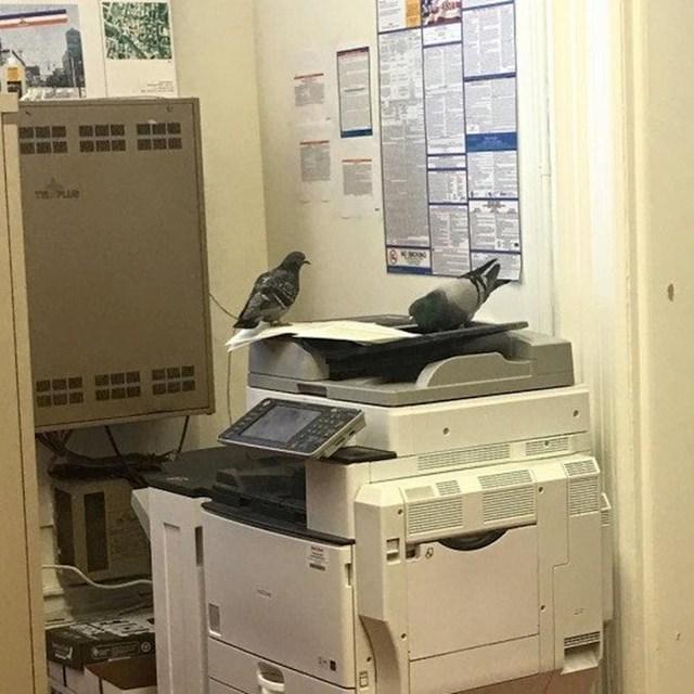 Neumorni radnici rješavaju svoj posao na fotokopirki...