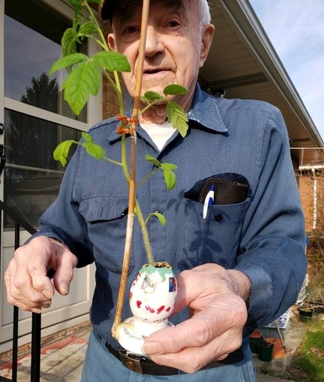 """""""Moj djed je ponosno pokazao kako je uzgojio rajčicu u razbijenom jajetu."""""""