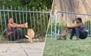 VIDEO Ima li ova žena supermoći? Izgubljeno lane je zapelo u metalnoj ogradi, pogledajte što je ona učinila