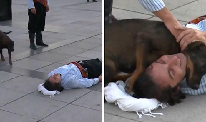 Ulični pas je mislio da je glumac stvarno ozlijeđen, njegova reakcija je oduševila javnost