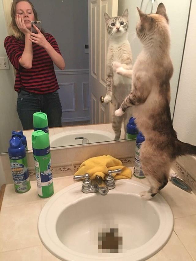 """""""Ostavila mi je poklon u umivaoniku."""""""