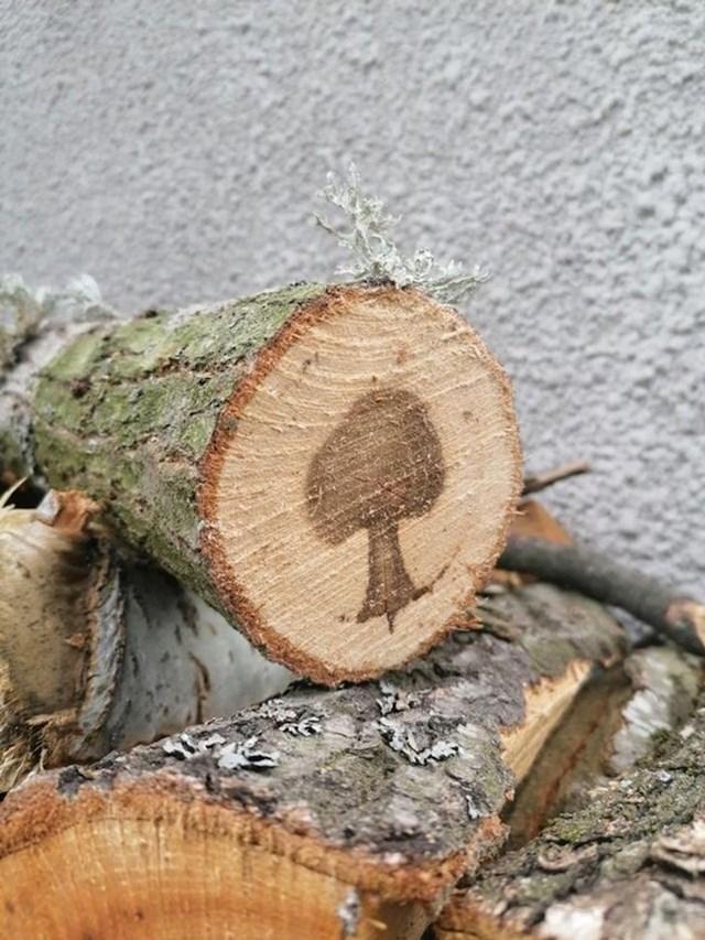 Drvo koje u sebi ima nacrtano drvo... :)