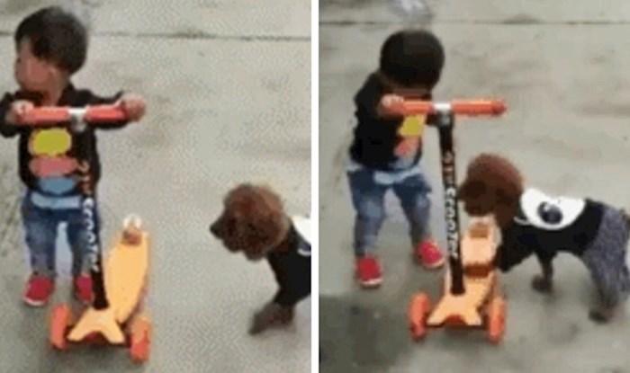 Dječačić je držao svoj romobil, a onda je mama snimila nevjerojatnu scenu sa psom