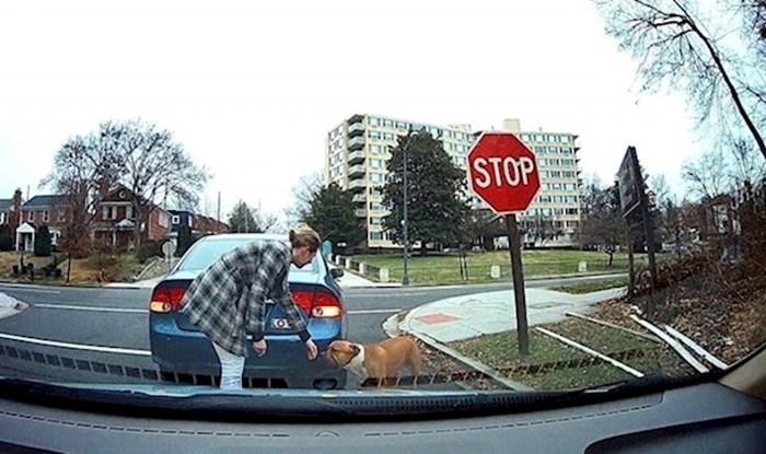Vozač je ugledao izgubljenog psa, način na koji je riješio problem vraća nadu u ljude