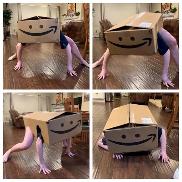 Igrala se s kutijom u kojoj je stigla dostavljena roba...