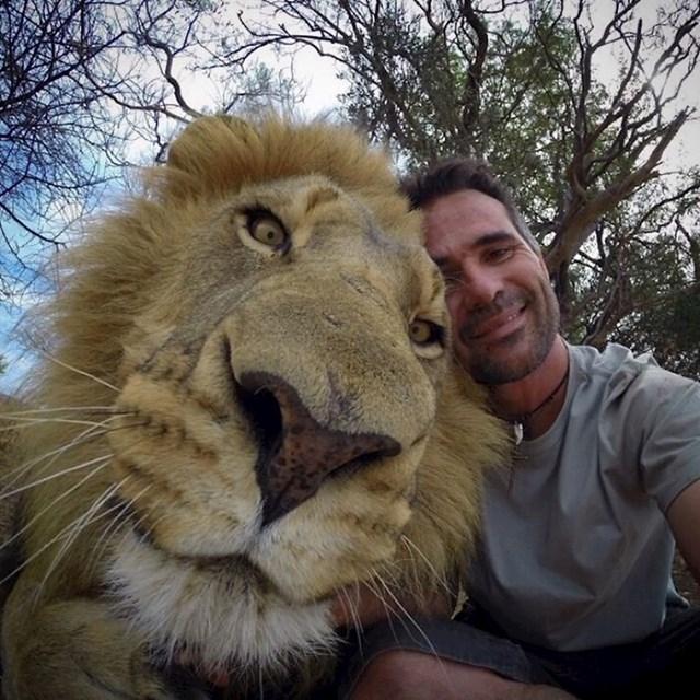 Usporedba glave lava i čovjeka