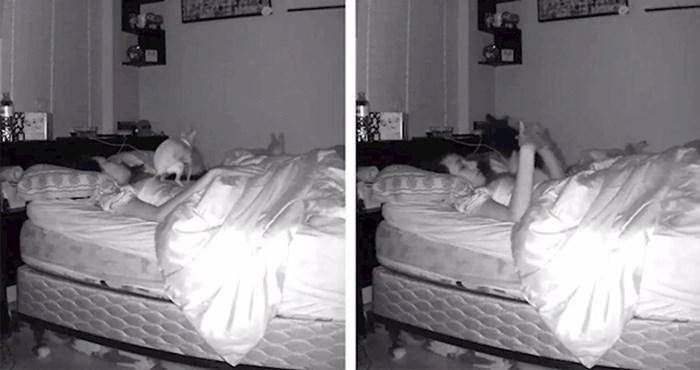 VIDEO Pokušala je spavati, a onda je došao pas i učinio nešto što nikad neće zaboraviti