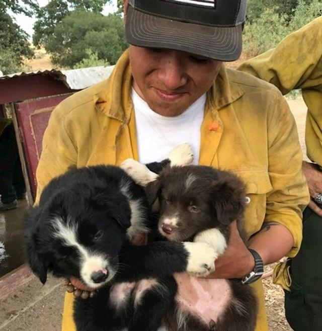 """""""Pobrinuo se da psiće koje je netko ostavio nakon evakuacije."""""""