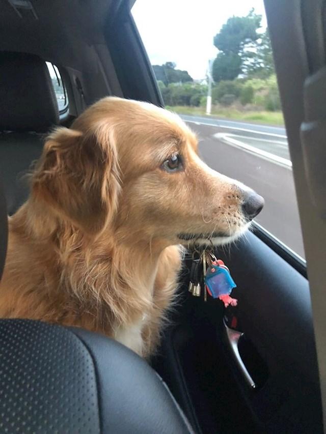 """""""Ovo je Billie. Nikad nije kužila zašto ja imam ključeve za auto, a ona ne. Napravila sam ključeve za nju i sad ih uzme sa sobom svaki put kad se idemo voziti."""""""