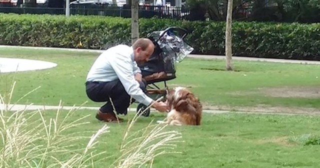 Prolaznik je potajno slikao muškarca sa psom i praznim kolicima