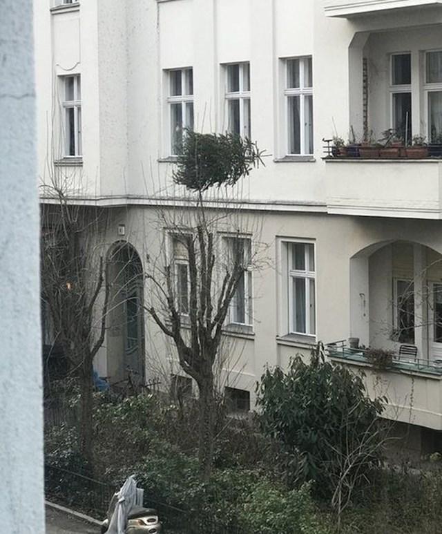 """""""Jedan od naših susjeda je mislio da je ok bacati božićno drvce s balkona. Ostalo je u granama."""""""