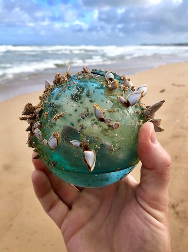 Netko je na plaži pronašao staklenu kuglu koju su nastanile male morske životinje.